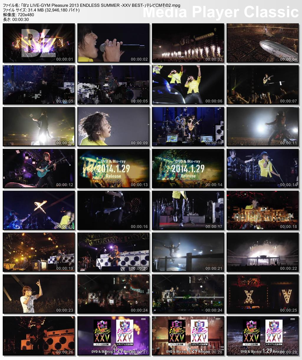 「B'z LIVE-GYM Pleasure 2013 ENDLESS SUMMER -XXV BEST-」テレビCM その2