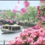 「君を気にしない日など」がハウステンボス「111万本のバラ祭り」CMソングに決定