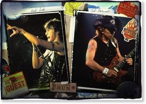 DVD「B'z LIVE-GYM Hidden Pleasure ~Typhoon No.20~」詳細決定